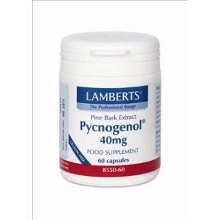 BestPharmacy.gr - Photo of Lamberts Pycnogenol 40mg 60 Caps