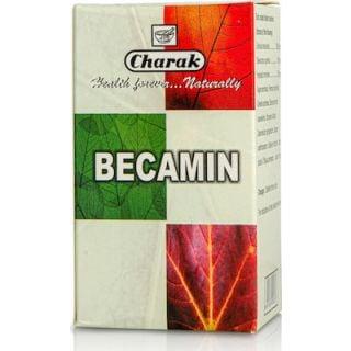 Charak Becamin 100 Tabs Συμπλήρωμα Διατροφής για Καταπολέμηση του Στρες