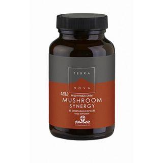 Terranova Mushroom Synergy 50 Caps