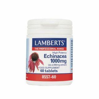 BestPharmacy.gr - Photo of Lamberts Echinacea 1000mg 60 Tabs