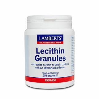 BestPharmacy.gr - Photo of Lamberts Lecithin granules 250gr