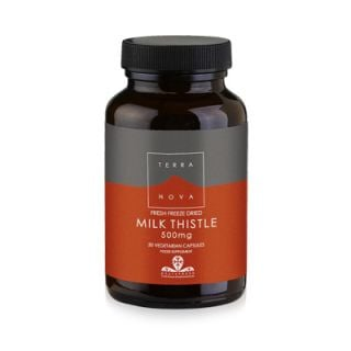 Terranova Milk Thistle 500mg 50 Caps Αποτοξινωτικό