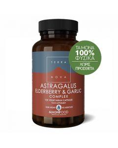 Terranova Astragalus, Elderberry & Garlic Complex 100 Caps